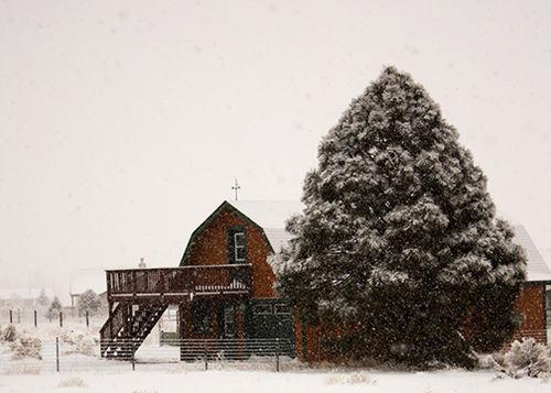 1st-Snow-2