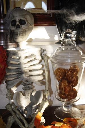 Skull-apothecary-web